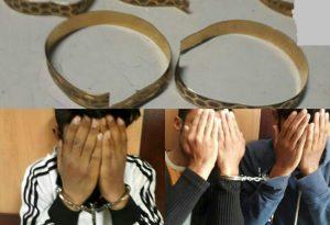 ورود تبهکاران به منازل در پوشش فرش شور