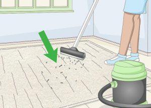 پاک کردن لکه های مختلف از روی فرش و موکت