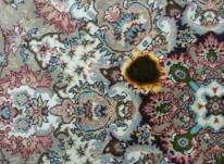 راه های از بین بردن سوختگی فرش