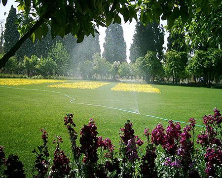 باغ جهان نما یکی از کهنترین باغهای شیراز