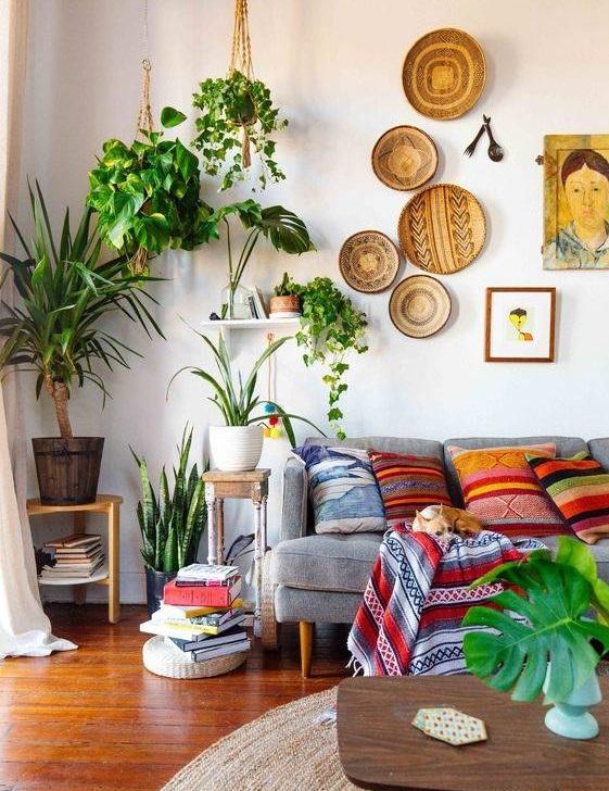 تاثیر حیرت انگیز گل و گیاه در دکوراسیون منزل