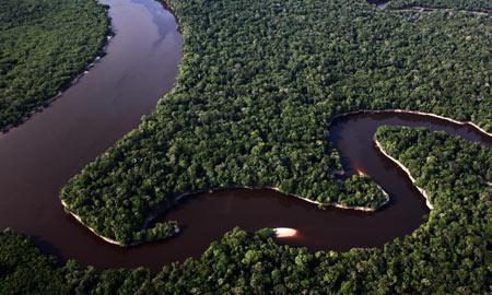 جنگل آمازون یکی از شگفتی های جهان